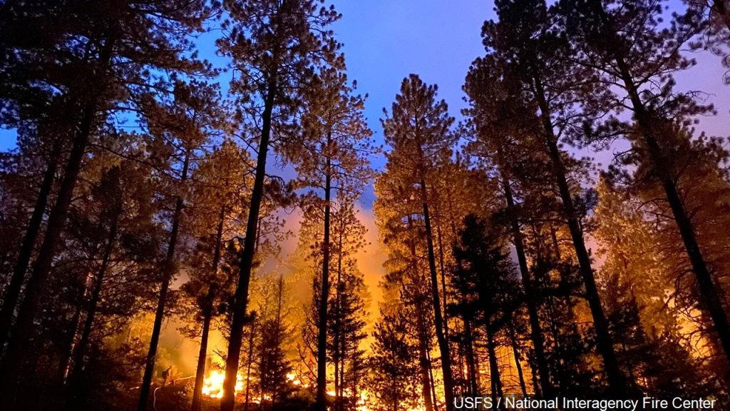 Strong Winds Expected to Fan Southeastern Wyoming Wildfire