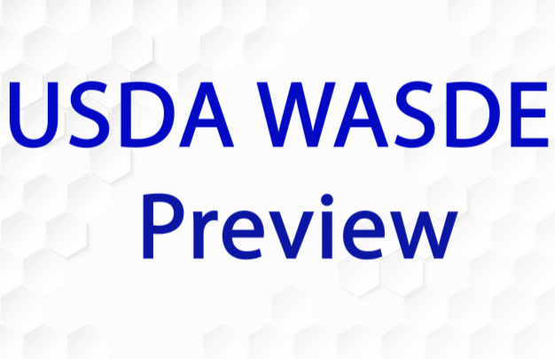 September WASDE Preview