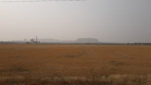 Panhandle Seeing Degraded Air Quality from Wildfire Smoke
