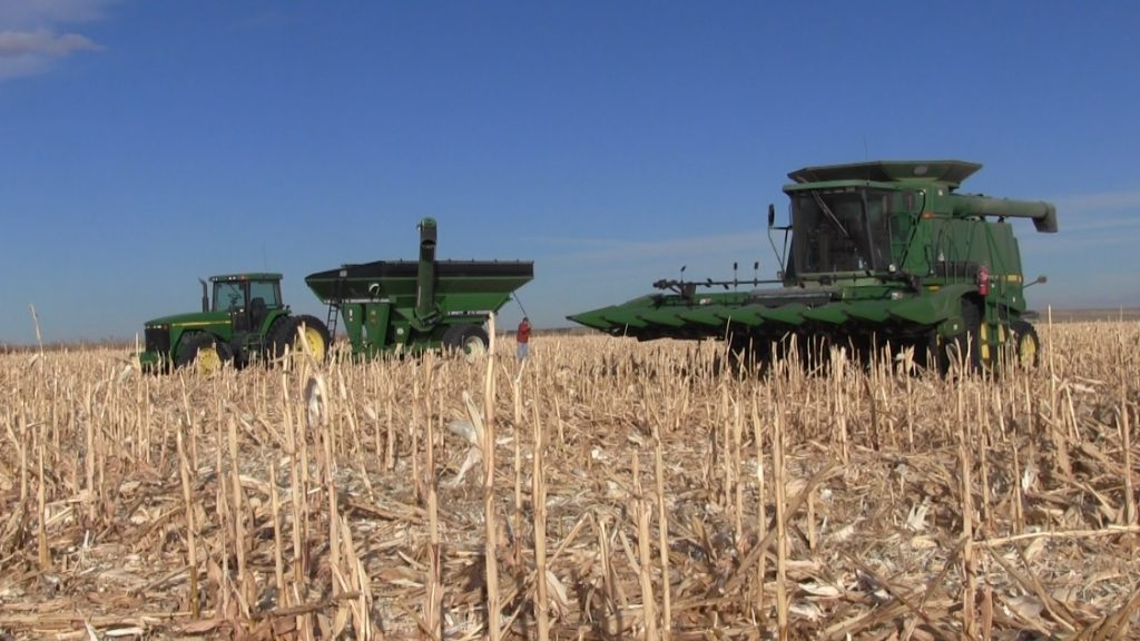 Panhandle Corn Harvest Being Completed Early