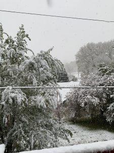 Mid-October Snowfall in Northeast Nebraska