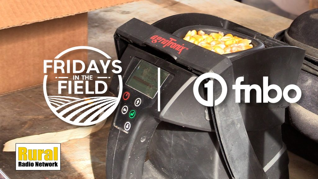 Combine parked as Vodicka waits for corn to dry | Fridays in the Field | Ep. 19