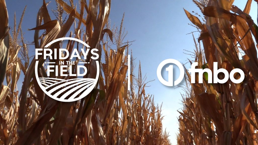 UNL TAPS program prepares for harvest, awards banquet | Fridays in the Field | Ep. 20