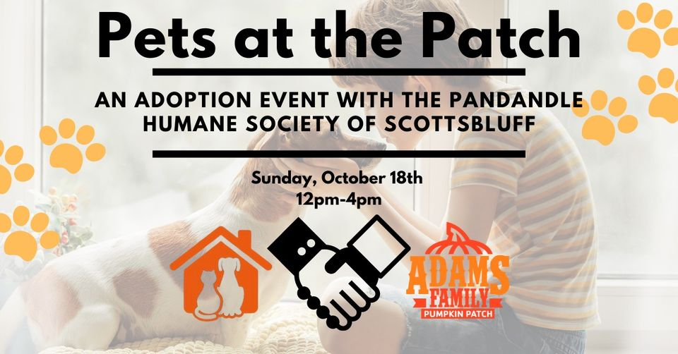 Panhandle Humane Society Hosting 'Pets at the Patch' Sunday