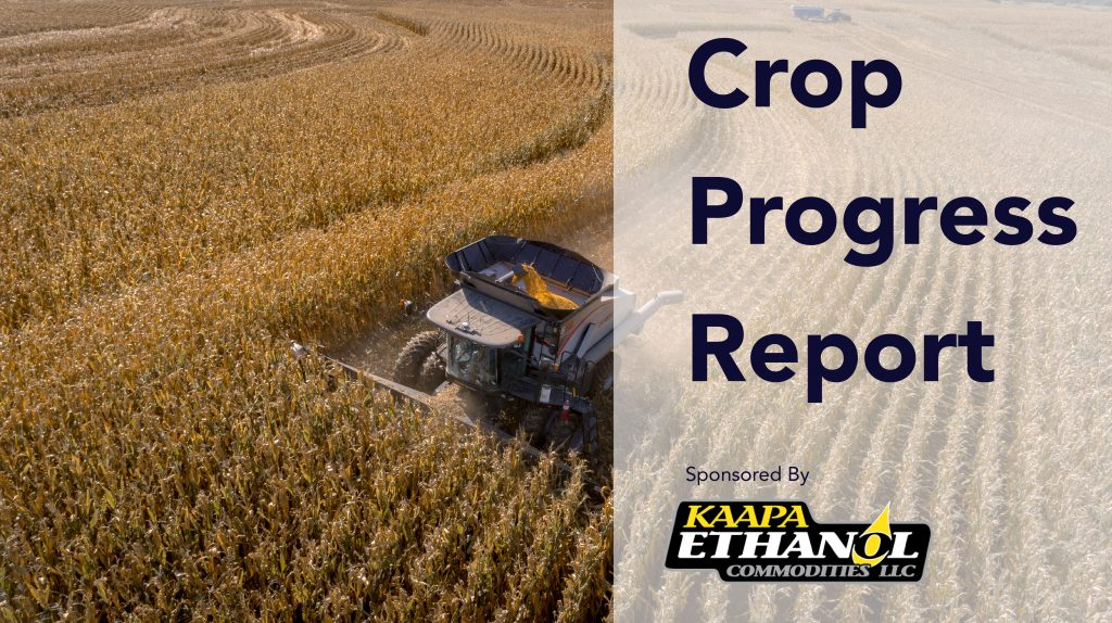 Audio: KAPPA Ethanol crop progress report for the week of October 19
