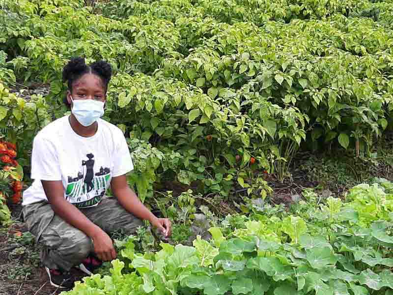 Farming program delivers agricultural know-how and nutrition