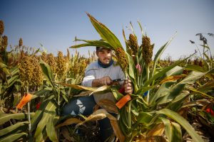 Report: UNL Ranked Among Top 20 in Agricultural Sciences in U.S.
