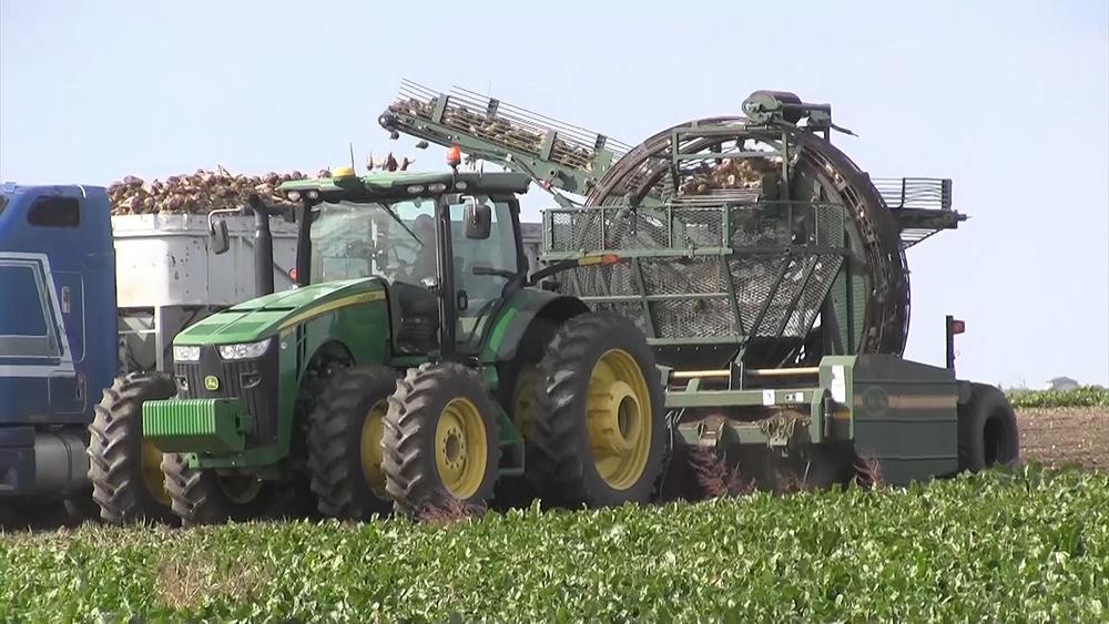 A bountiful harvest in western Nebraska