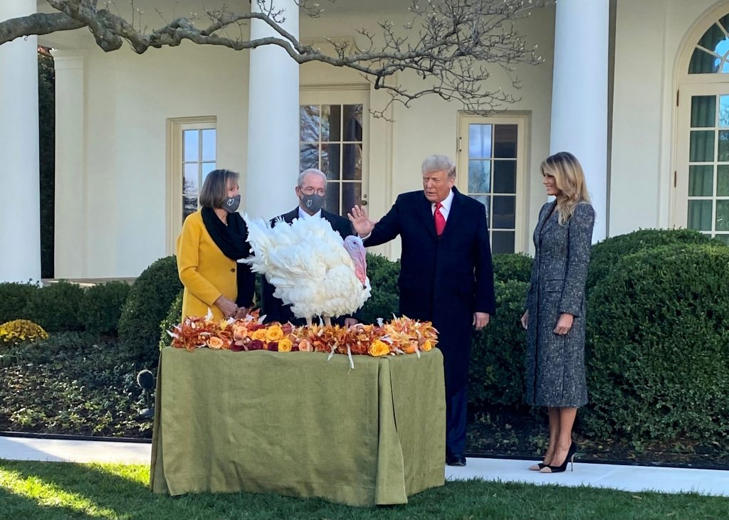 National Thanksgiving turkey welcomed to the White House