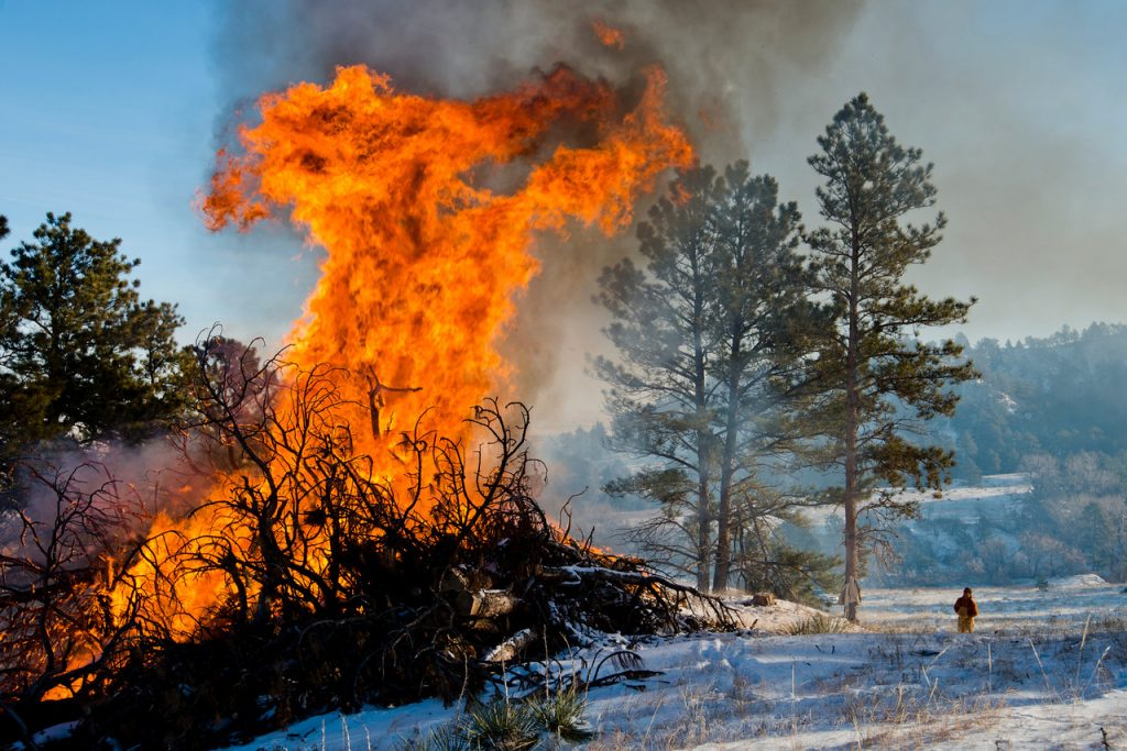 Game and Parks to Burn Brush Piles Throughout Winter