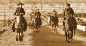Audio: Darr Feedlot, Inc. finds success with committed team of employees, partners | Friday Feeders