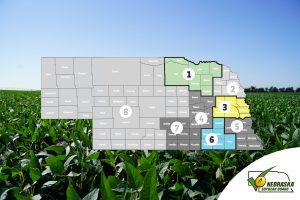 Nebraska Soybean Board seeks leaders