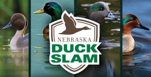 Duck Slam Challenges Hunters, Brings Families Together