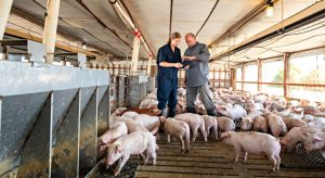 Pork Industry Forum will be a virtual event