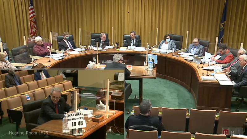 Natural Resources Committee Hears Preliminary Info on February Blackout Causes